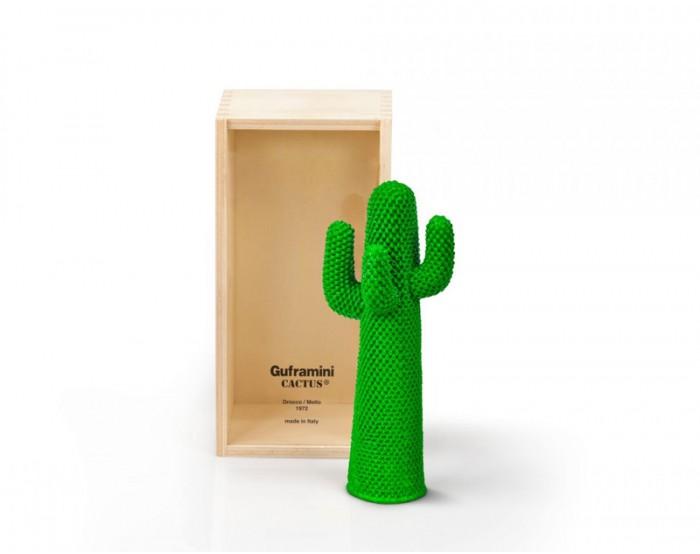 Guframini Cactus
